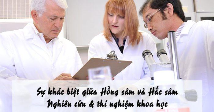 su-khac-biet-giua-hong-sam-va-hac-sam-nghien-cuu-thi-nghiem-khoa-hoc-1